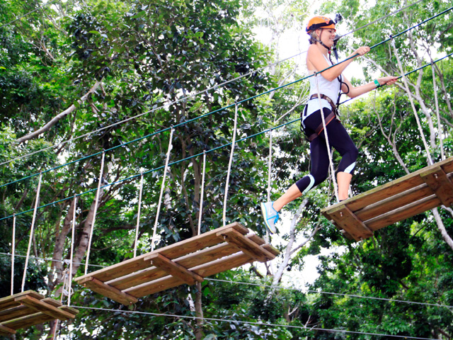 Outdoor Activities In Singapore Team Building At Forest Adventure