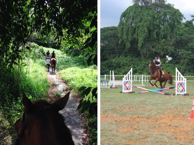 Go on Gallop Stable picturesque  trial rides