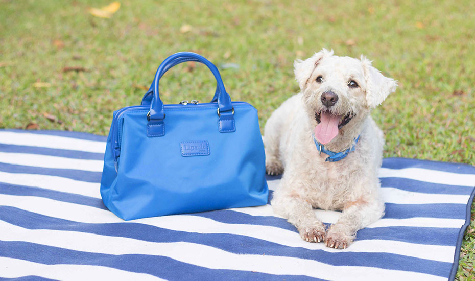 French Lipault bags with cute dogs | Honeycombers