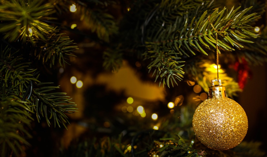 christmas tree shopping where to buy real and artificial xmas trees in singapore - Where To Buy Christmas Tree