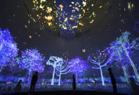 Explore an enchanting world of fauna and flora at National Museum of Singapore's Glass Rotunda