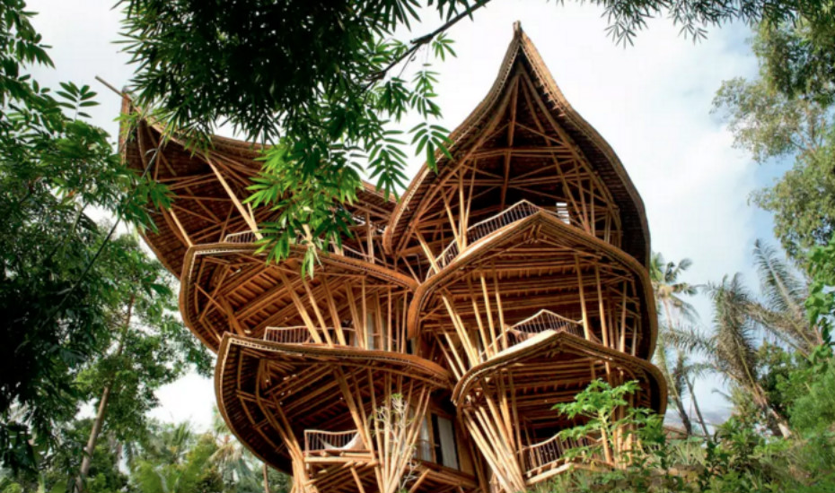Awesome Vietnam Treehouse Part - 3: Crazy House, Dalat, Vietnam