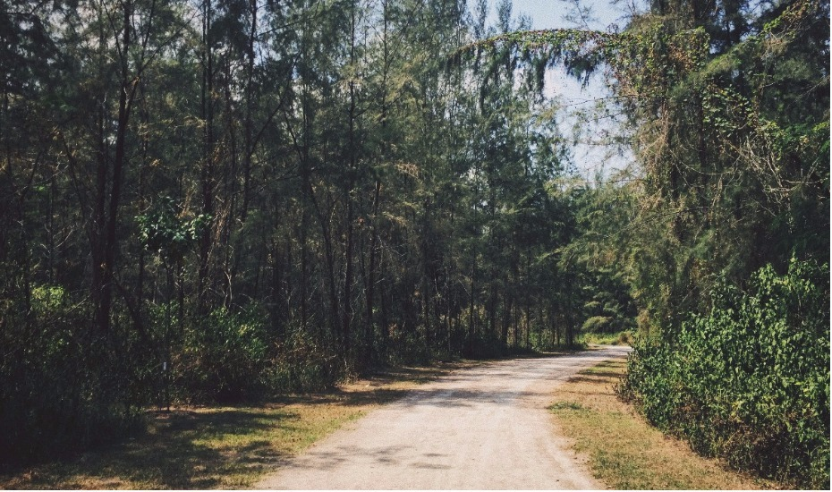 Coney Island Singapore: our perfect day outdoors at this park near Punggol Settlement