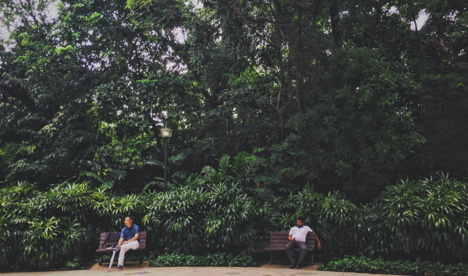 Singapore's secret parks and hidden green spaces in the city