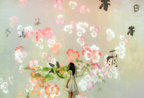 Art Exhibitions in Singapore | ArtScience Museum | Things to do in Singapore | TeamLab