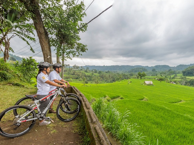 Be one with nature and soak in Ubud's glorious view on a bike ride