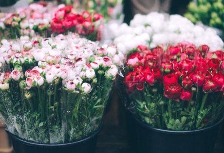 Flower Markets in Jakarta