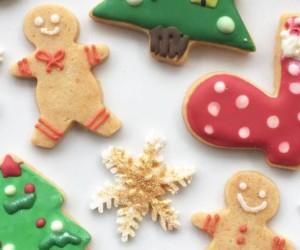 Hokkaido Baby Christmas