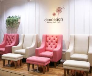Dandelion Salon