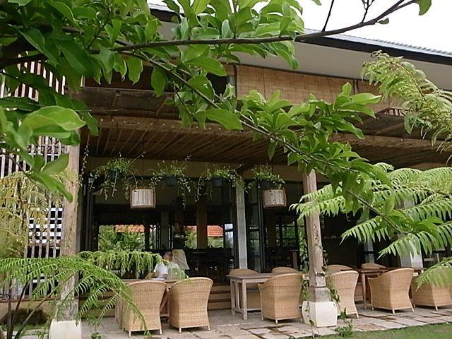 New in Canggu:  Doji.Bali