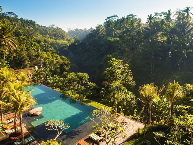 Cocktails in Bali: Jungle Fish