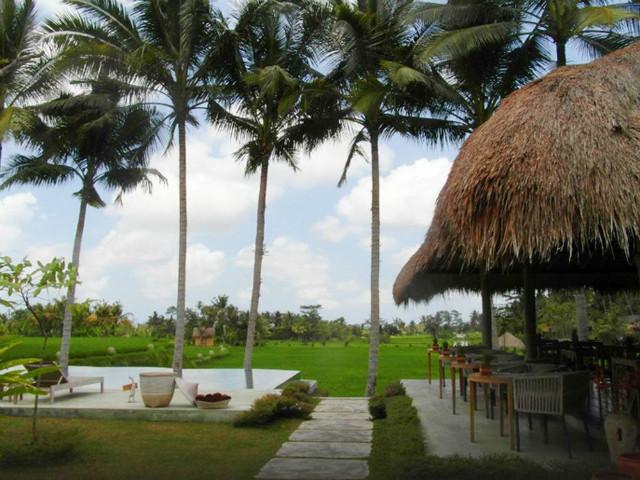 Restaurants in Ubud: Terracotta Restaurant
