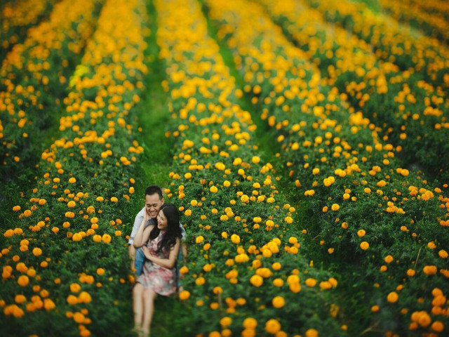 Instagram worthy places in Bali: Marigolds