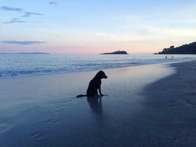 Instagram worthy places in Bali: Virgin Beach