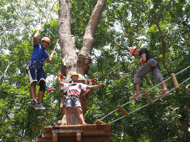 Forest Adventure | Singapore Directory | Honeycombers Singapore