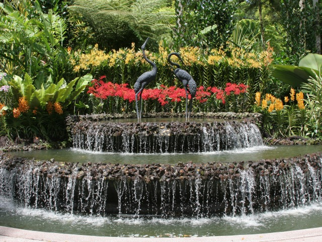 Singapore Botanic Gardens | Things to do in Singapore
