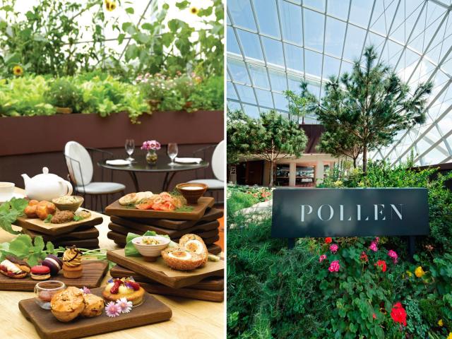 restaurants-for-ladies-lunch-in-singapore-pollen