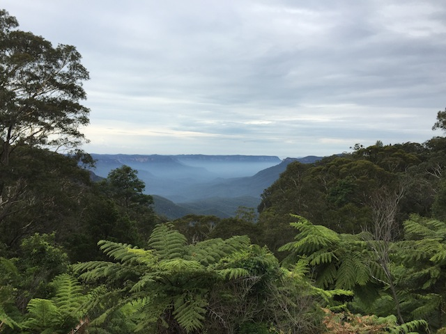Breathe in fresh air in The Blue Mountains