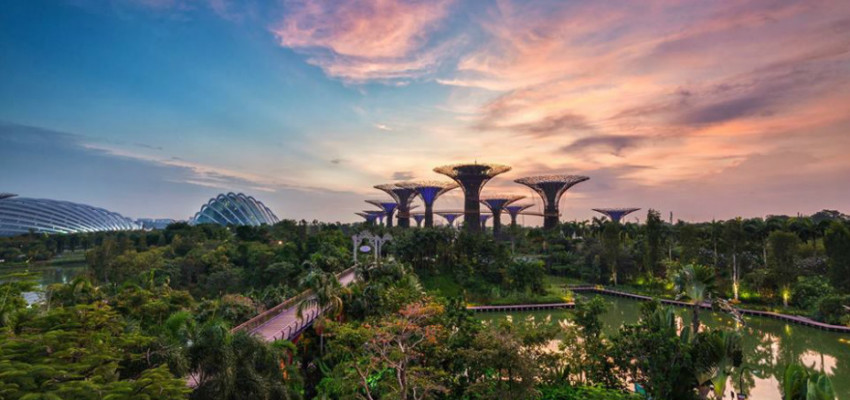 Parks in Singapore: Gardens by the bay
