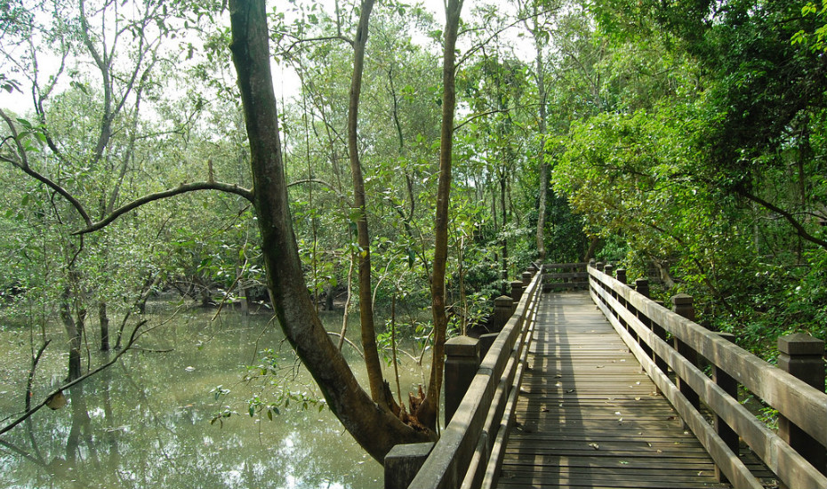 Parks in Singapore: Sungei Buloh Wetland Reserves
