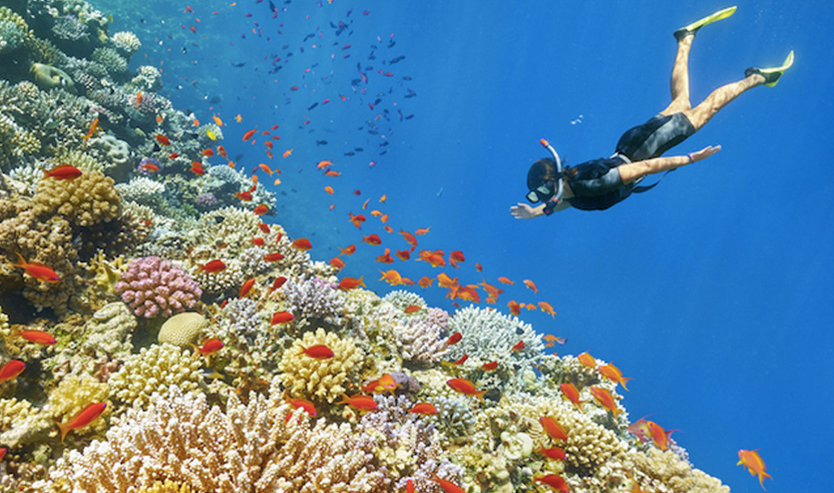 where to snorkel in asia the best beaches islands and reefs to visit