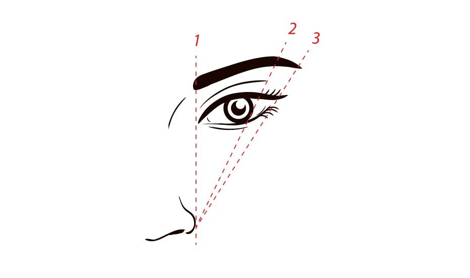 Eyebrow guide: Eyebrow shaping diagram