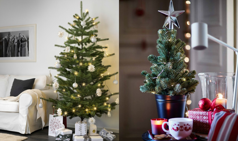 Christmas Tree Shopping: Where To Buy Real And Fakes Trees
