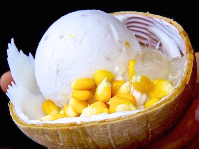 Coconut ice cream with sweetcorn and peanut (Photo credit: Koko Ice Cream)