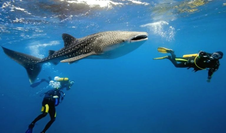 Adventure holidays in Southeast Asia: Best treks, tours and outdoor activities including wreck diving, caving and quad biking