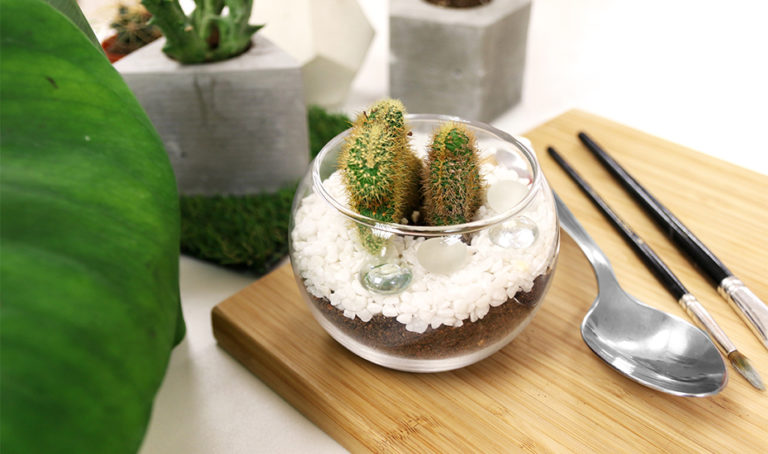 How to make a terrarium in Singapore: Terrarium workshops, classes, stores and our handy DIY guide