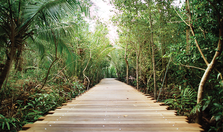 Explore Pulau Ubin and enjoy its beautiful greenery (Credit: NParks)