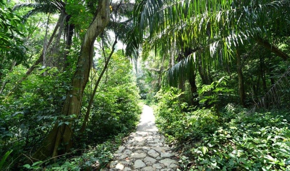 Leafy Windsor Nature Park