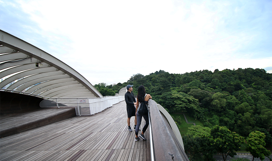 Parks in Singapore: Southern Ridges