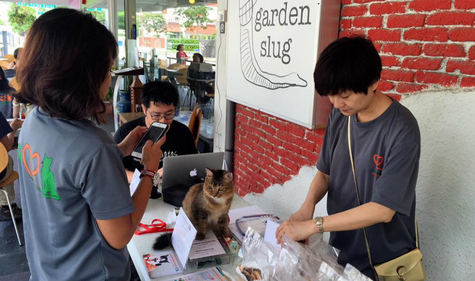 Love KuchingProject Animal Charities
