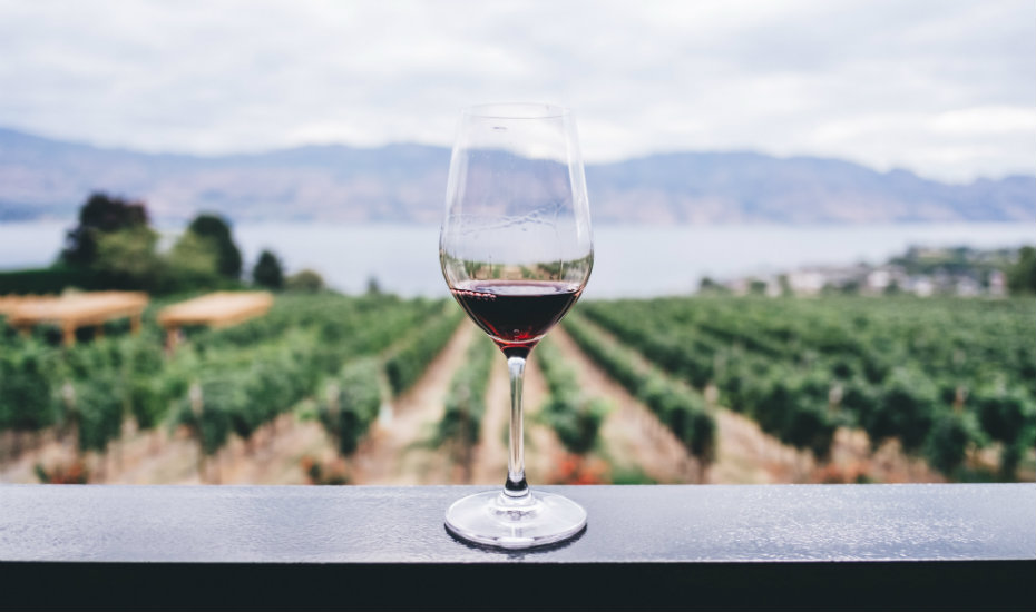 From the vineyard to your home (Photography by Kym Ellis via Unsplash)