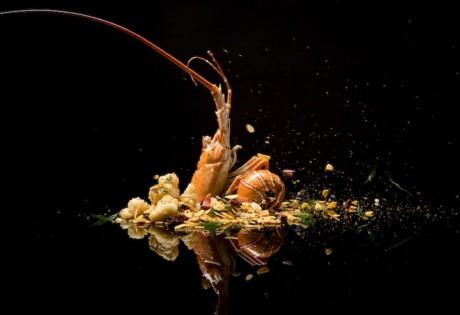 Bi Feng Tang Golden Peony Honeycombers Amex