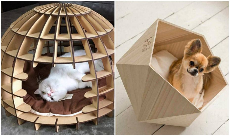 Furr Play | The coolest pet beds in Singapore for cats and dogs to snooze in