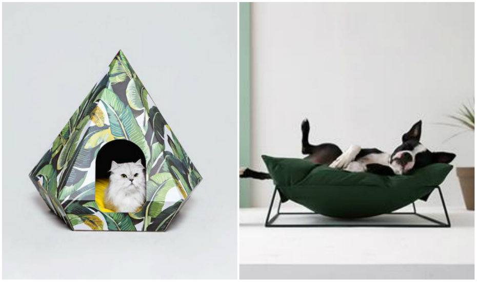 Pets Actually | The coolest pet beds in Singapore for cats and dogs to snooze in