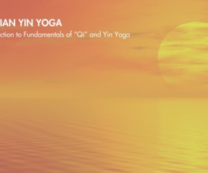 meridian yin yoga honeycombers singapore
