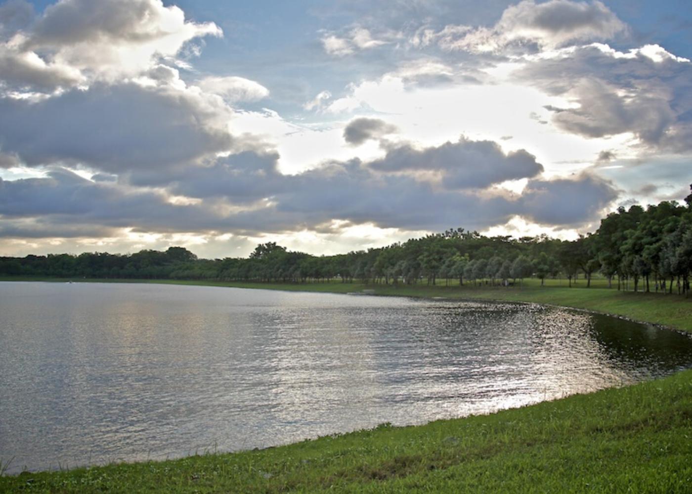 Guide to Bedok: Bedok Reservoir
