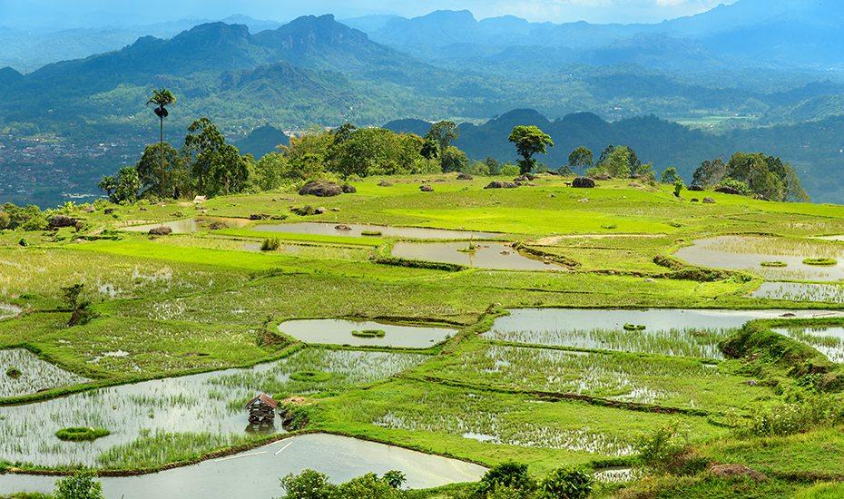 Unique destinations in Asia: Tana Toraja in Sulawesi