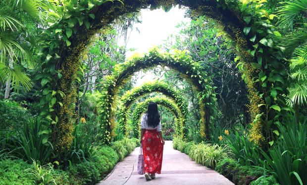 Singapore Botanic Gardens guide