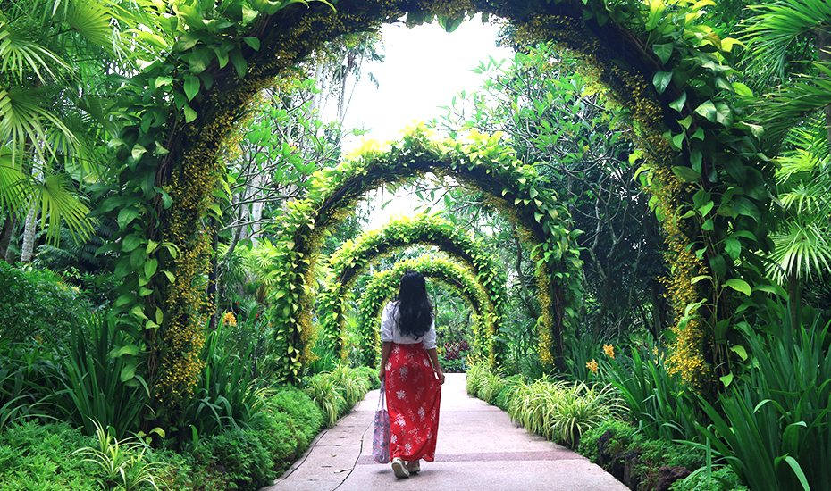 A gorgeous day out at Singapore Botanic Gardens: what to see, do and eat