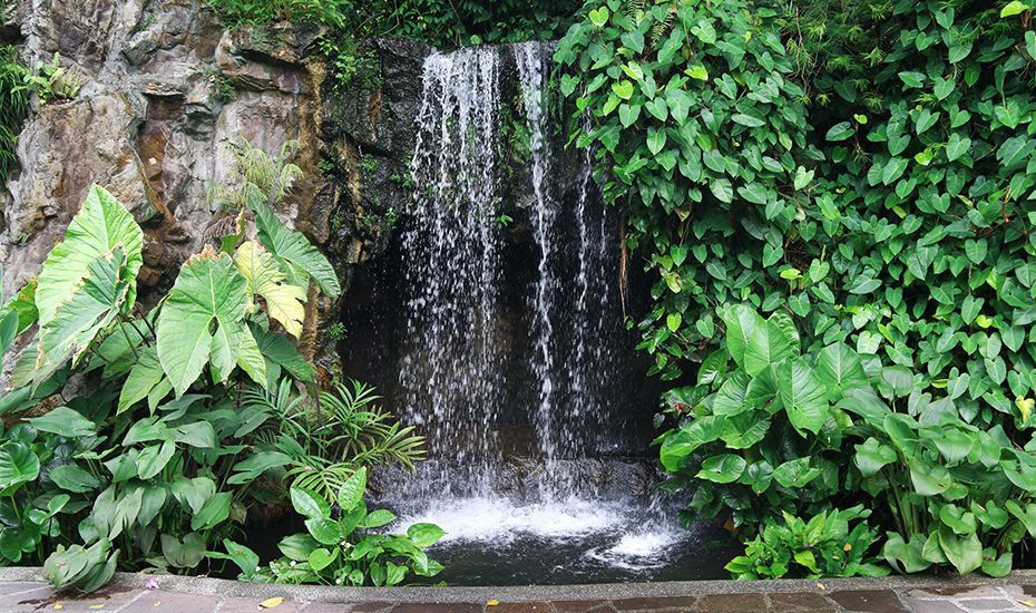 Singapore Botanic Garden: The stunning waterfall of the Ginger Garden.