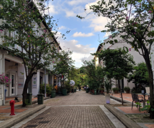 Guide to Duxton Hill: Restaurants, cafes, and shops in this hip neighbourhood