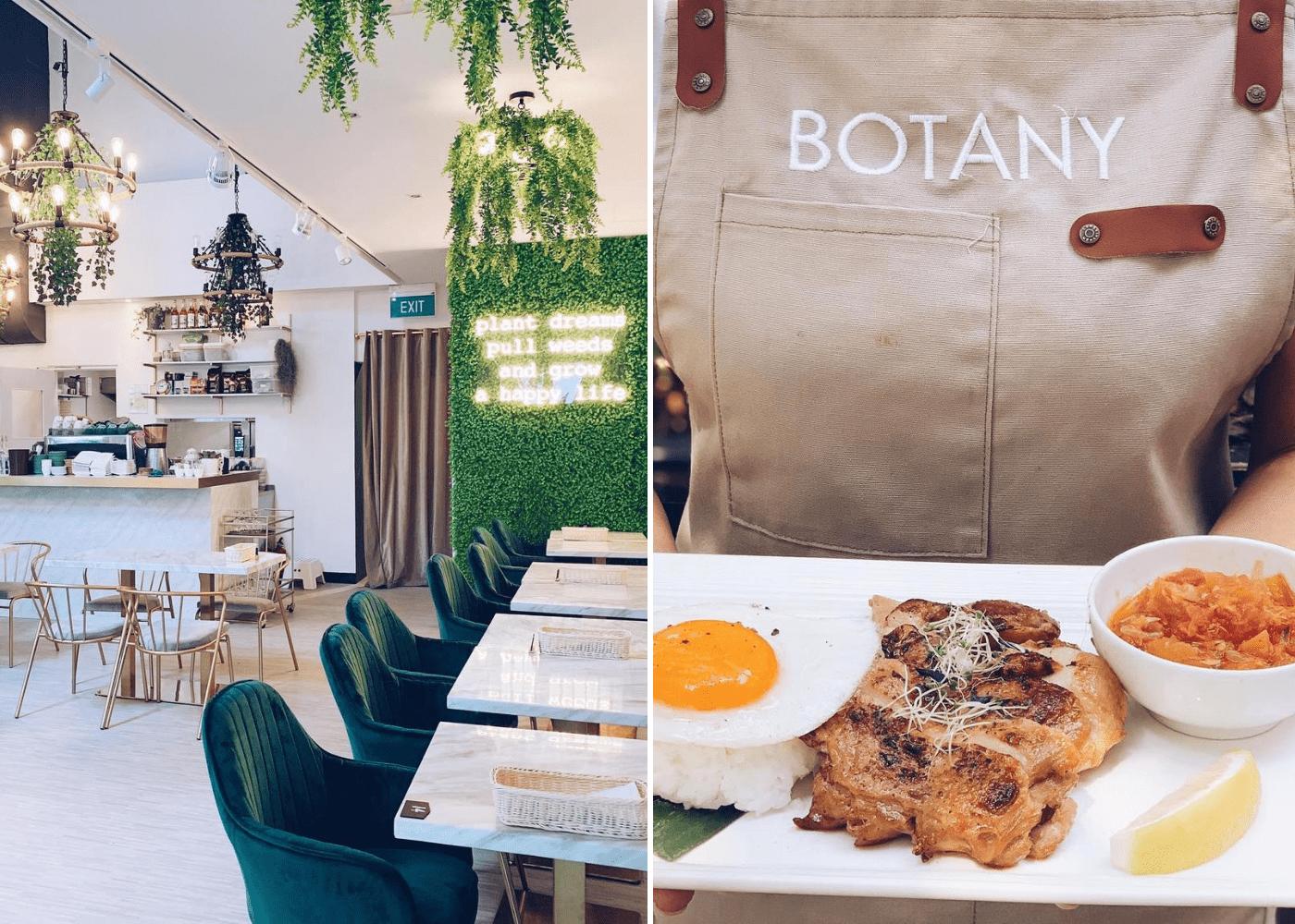 botany | tropical cafes