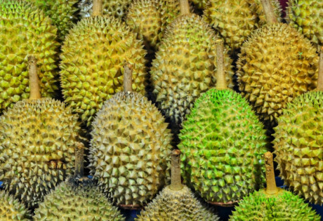 Peculiar durian dishes in Singapore