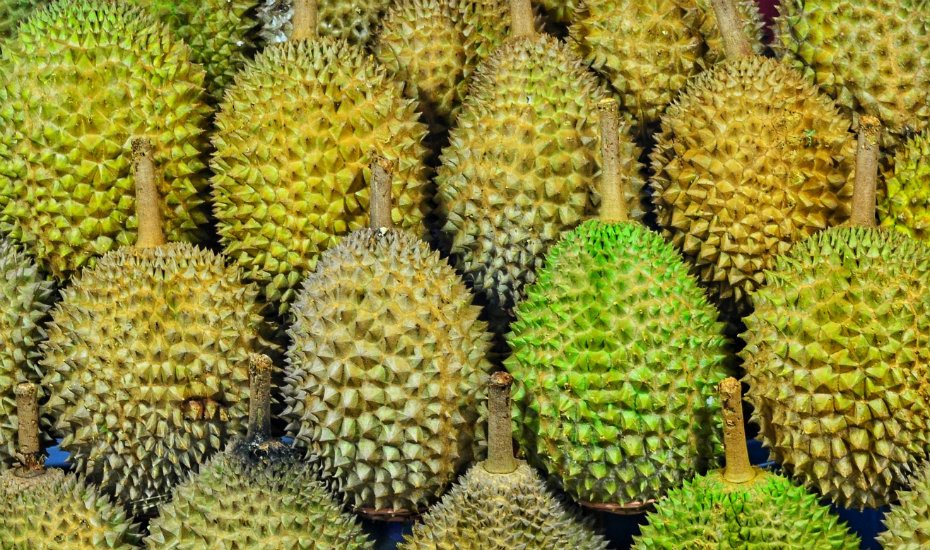 We dare you to try these durian dishes: Sweet, savoury, and sometimes strange