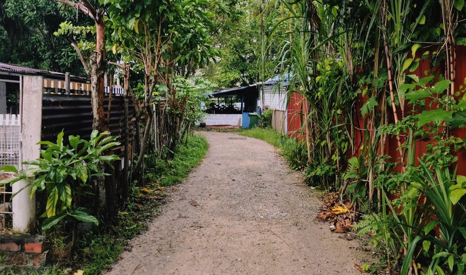 Exploring the Last Kampong in Singapore: Kampong Lorong Buangkok