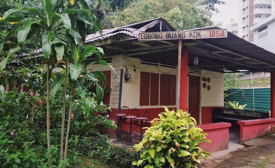 Exploring the last kampong in Singapore: Kampong Lorong Buangkok